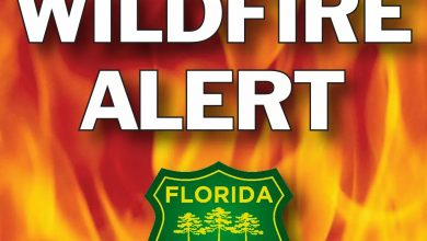 Photo of BRUSHFIRE REPORTED IN INDIAN RIVER COUNTY