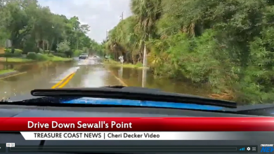 Photo of A drive down Sewall's Point